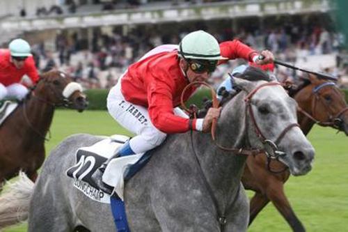 Tin Horse gagnant de la Poule d'Essai des Poulains en 2011